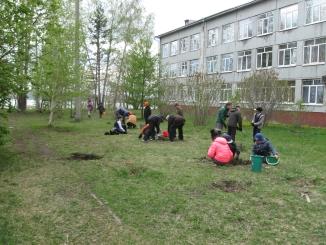 Иркутская областная библиотека имени Марка Сергеева школьники кедр экология