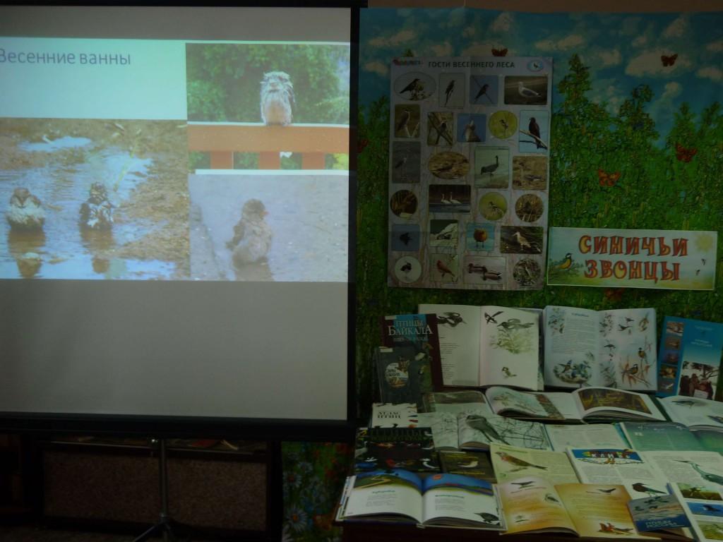 Книги Выставка День птиц Иркутская областная детская библиотека им. Марка Сергеева
