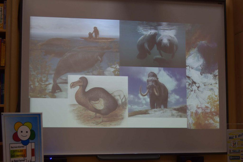 экран животные Иркутская областная детская библиотека им. Марка Сергеева