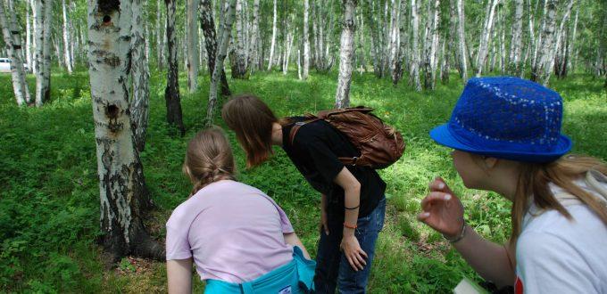 трава цветы дети записи