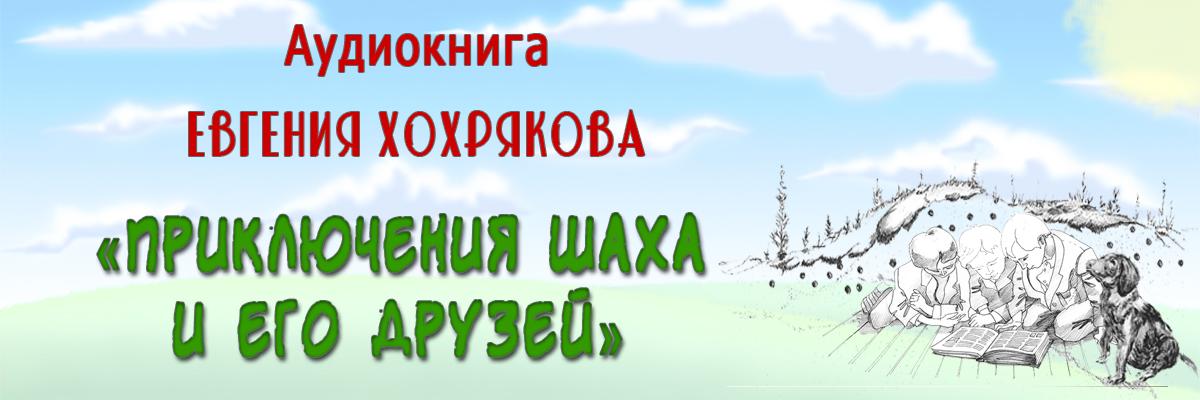 Аудиокнига «Приключения Шаха и его друзей»